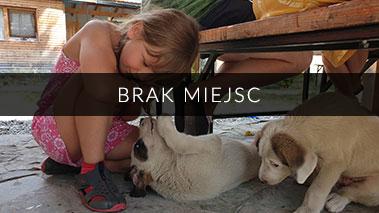 karol_8_brak_miejsc